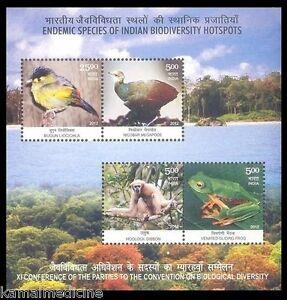 INDIA 2012 MNH SS, Gibbon, Monkey, Birds, Frog, Biodiversity, Environment