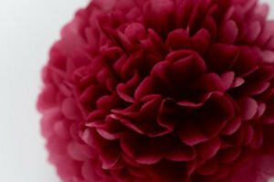 "Tissue Paper Pom Pom-Burgundy Wedding/Party Decorations XL 19"" 49 cm"