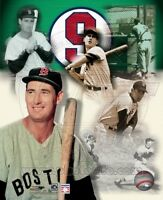 TED WILLIAMS BOSTON RED SOX  *LICENSED* 8X10 PHOTO *LICENSED*