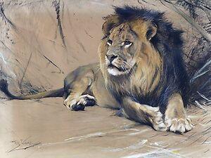 Africa lion W. Spielende Accent Tile Mural Kitchen Backsplash Art Marble Ceramic