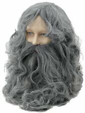Grey Wizard Wig & Beard Set Grey Gandalf Fancy Dress Mens Adult