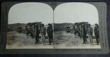 ANTIQUE STEREOVIEW CARD OF ANDALUSIAN CARTS COMING INTO TOWN ALMERTA SPAIN