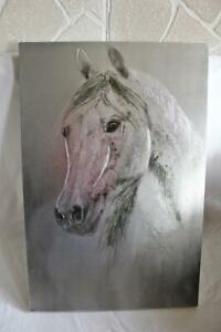 Large Multi Medium Horses Head Portrait On Fabric Oil and Spray Paint Equestrian
