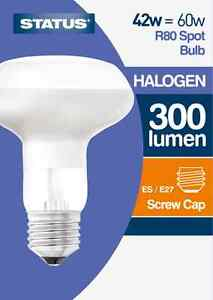 STATUS R80 42W ES/E27 HALOGEN SPOT/REFLECTOR BULB  DIMMABLE X4 X6 OR X10