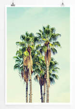 Vintage Palmen in Los Angeles 60x90cm Poster