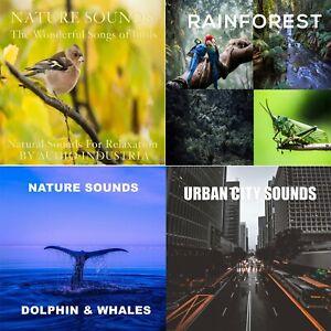 NATURE SOUNDS CD X4 CD BUNDLE SOUNDS OF BIRDS RAINFOREST DOLPHINS CITY