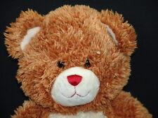 HIGH SCHOOL MUSICAL BUILD A BEAR PLUSH STUFFED ANIMAL DOGTAGS TEDDY BEAR TOY