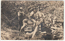 RPPC - Logging Scene - Men Cutting Wood in Forest w/ Child - early 1900s