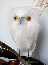 "6.5"" High Feather Owl - Nat White"