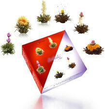 Creano 070 Teeblumen Mix in Geschenkbox | 6x ErblühTee (3x Weiß, 3x Schwarz)