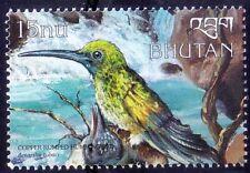 Copper-rumped Hummingbird (Amazilia tobaci), Birds, Bhutan 1999 MNH -( Q7)