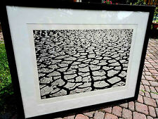 Menashe Kadishman, Black Cracks, Aquatint Etching 73/75 FRAMED