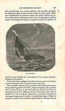 Feu Saint-Elme St. Elmo's fire light Boat Fire FRANCE GRAVURE ANTIQUE PRINT 1883