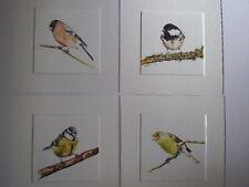 Watercolour Bullfinch,Coaltit , Bluetit, Greenfinch, prints x 4, in mounts