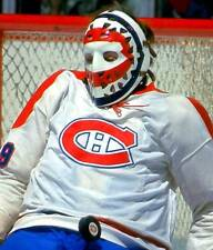 KEN DRYDEN VINTAGE GOALIE MASK HOCKEY MONTREAL CANADIANS 8X10 PHOTO