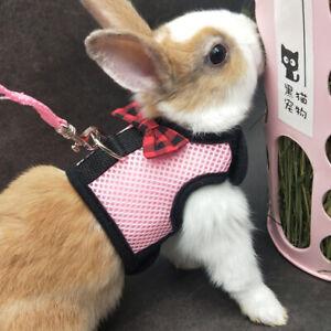 Dog Rabbit Mesh Harness vest Lead for Cat Teacup Chihuahua Yorkie XXXS XXS XS