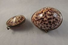 Antique lot of 2 shell pill or trinket boxes 19th cowrie
