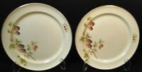 """Taylor Smith Taylor Pine Cone Luncheon Plates 9 1/4"""" TST 1649 Set of 2 Excellent"""