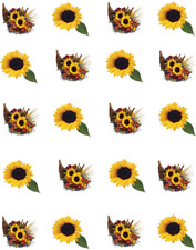 Fall Cornucopia and Sunflower Waterslide Nail Decals/Nail art