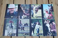 8 Parelli Inside Access Lesson Horse Training Dvd's