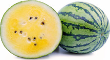 Watermelon Small Yellow Sweet Juicy 20 Seeds Organic Edible Heirloom NON-GMO