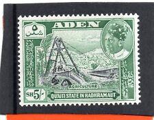 Aden/Shihr&Mukalla 1963 5s black&blue-green sg 51 VLH.Mint