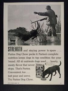 1969 black lab photo Purina Dog Chow vintage print Ad