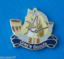 GREYS SCOUTS RHODESIA LAPEL BADGE ENAMEL & GOLD PLATED WITH 1 PIN