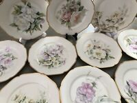 """10 Depose H & C Co. Limoges Hand Painted Floral Plates Gold Edged  9.5"""""""