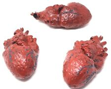 Lot of 3 Large Bloody Faux Human Heart Body Parts Halloween Prop Decoration