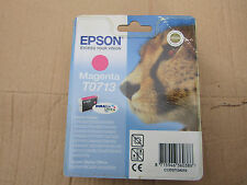 Epson T0713 Magenta Inkjet Cartridge - DX, SX and other models..Wall2 3006534458