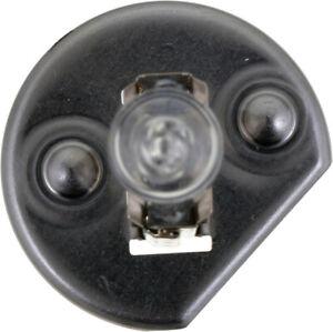 Headlight Bulb-Standard Philips H1C1 - Set of 2