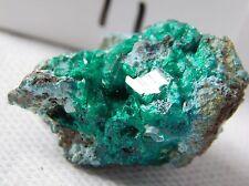 11) Dioptase Specimen Green Mineral Crystal Rock Congo Africa - Rare Top Grade