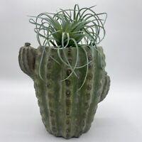 Concrete Green Saguaro Cactus Succulent Pot Planter Vase Utensil Holder Heavy
