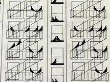 RPF28 Old Style New York City Fire Escape Pigeon Bird Cotton Quilting Fabric