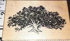 Psx,beautiful tree,g162,c6,rubber,stamp, wood