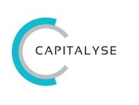 Capitalyse.com - Premium Brandable ONE WORD DOMAIN CAPITAL LOAN domain name