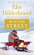 Winter Street by Elin Hilderbrand (2014, Hardcover, Large Type)