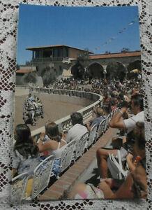 Retro Vintage Postcard: El Caballo Blanco, N.S.W. (Andalusian Dancing Horse)