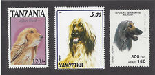 Dog Art Head St