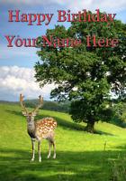 Deer Happy Birthday card code 37 A5 Personalised Greetings