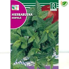 Hierbabuena ( Mentha spicata ) 0,2 gr / 2.000 semillas aprox - seeds