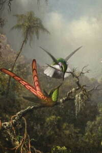 Martin Johnson Heade Orchid with Two Hummingbirds Giclee Paper Print Poster
