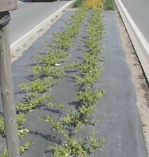 "Agfabric Landscape Easy-Plant Mulch,3.0oz, 3x50ft,Hole Dia-4""(12''Spacingx2 Row)"