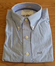 NEW Abercrombie & Fitch Ridge Trail Blue Striped Stripe Shirt S RRP £82