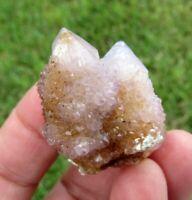 23 GM Natural Spirit Amethyst Crystal Quartz Spirit Cactus (WE)