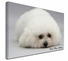More details for bichon frise dog 'love you mum' x-large 30