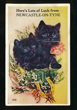 Northumberland NEWCASTLE-UPON-TYNE Cats Novelty Pocket 1956 PPC