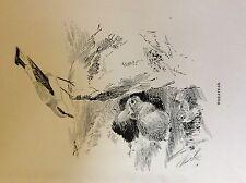 m3e ephemera book plate roland green  birds wheatear
