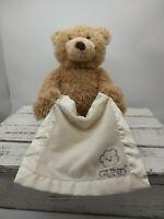 "Baby Gund Peek A Boo Bear Interactive Plush Stuffed Animal Toy 10"" Seated WORKS"